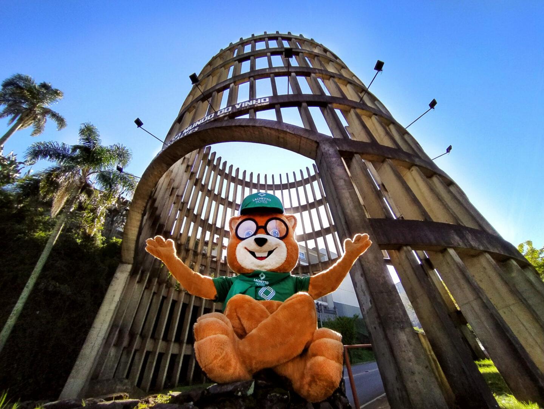 7 Lugares em Bento Gonçalves para Quem Nunca Visitou
